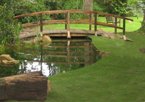 Self Sustainable Backyard : thePondlifeCo  Design, construction, and refurbishment of garden
