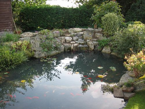Thepondlifeco design construction and refurbishment of for Surface fish ponds