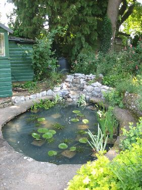 thePondlifeCo Design construction and refurbishment of garden